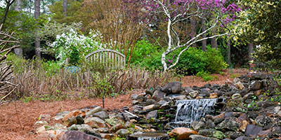Image of a stream in the SCC Horticultural Gardens.